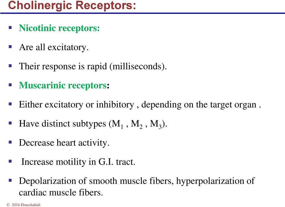 Muscarinic receptors: Either excitatory or inhibitory, depending on the target organ.
