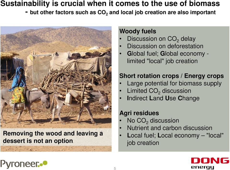 rotation crops / Energy crops Large potential for biomass supply Limited CO 2 discussion Indirect Land Use Change Removing the wood and