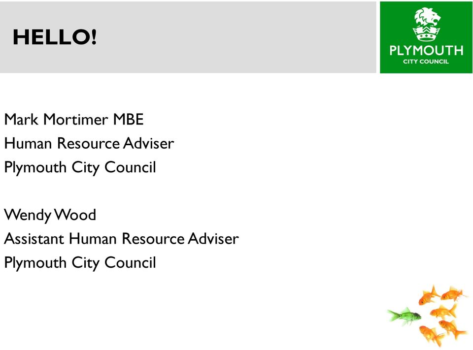 Adviser Plymouth City Council