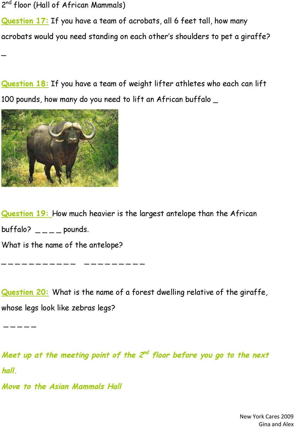 _ Question 18: If you have a team of weight lifter athletes who each can lift 100 pounds, how many do you need to lift an African buffalo _ Question 19: How much