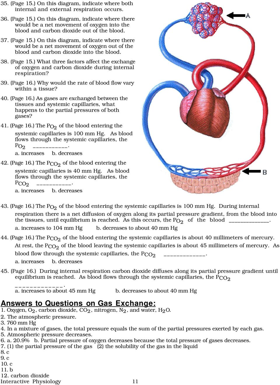 39. (Page 16.) Why would the rate of blood flow vary within a tissue? 40. (Page 16.) As gases are exchanged between the tissues and systemic capillaries, what happens to the partial pressures of both gases?
