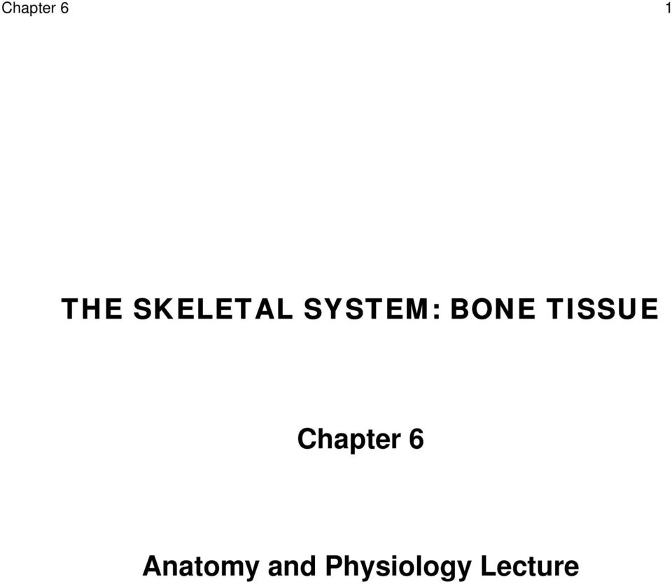 THE SKELETAL SYSTEM: BONE TISSUE. Chapter 6. Anatomy and Physiology ...