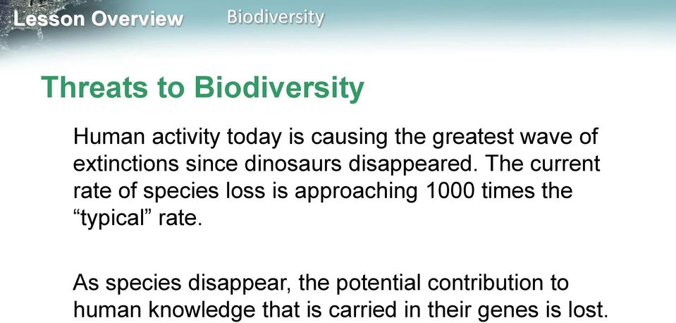 The current rate of species loss is approaching 1000 times the typical