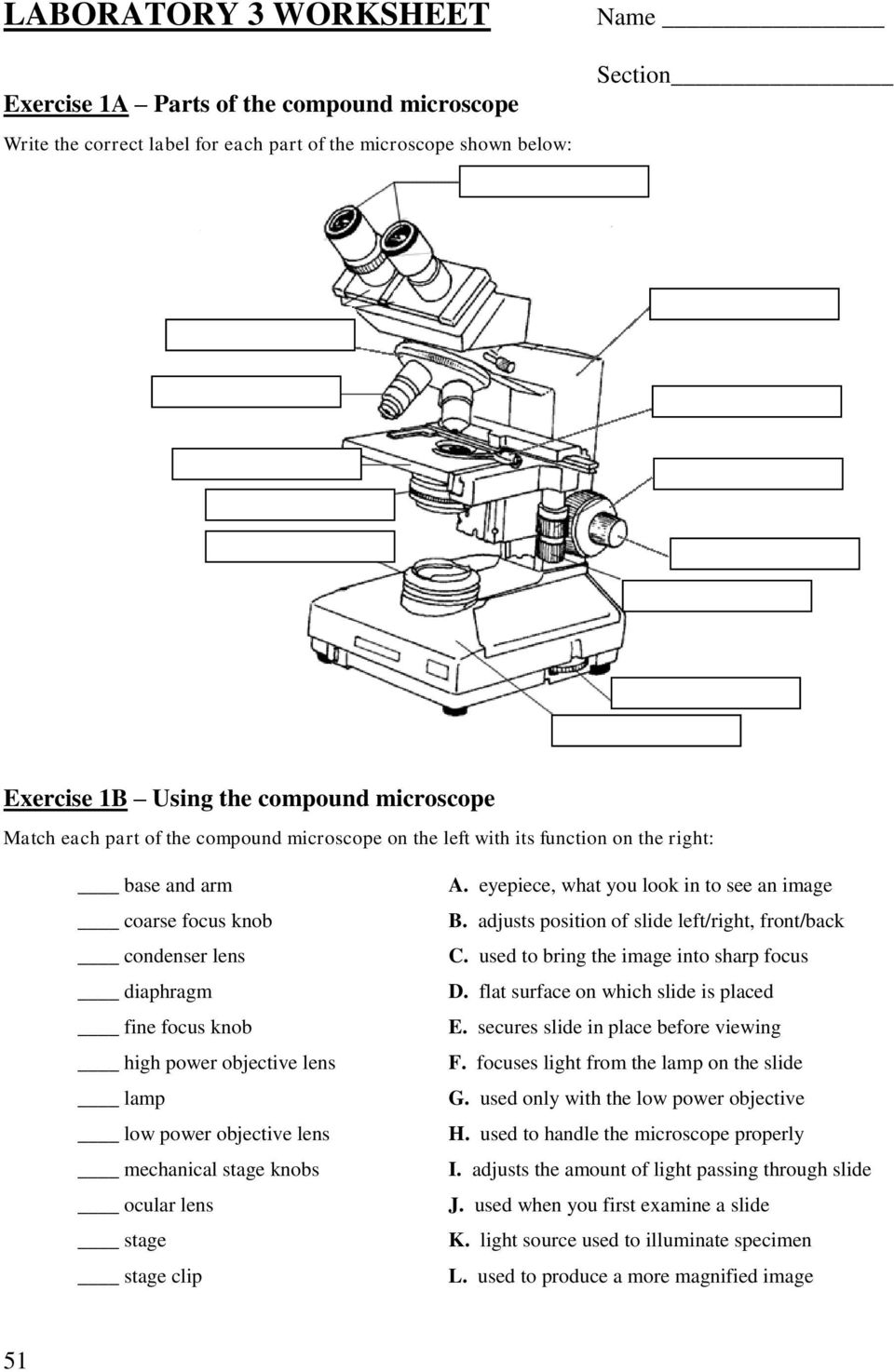 Lab 3 Use Of The Microscope Pdf Free Download
