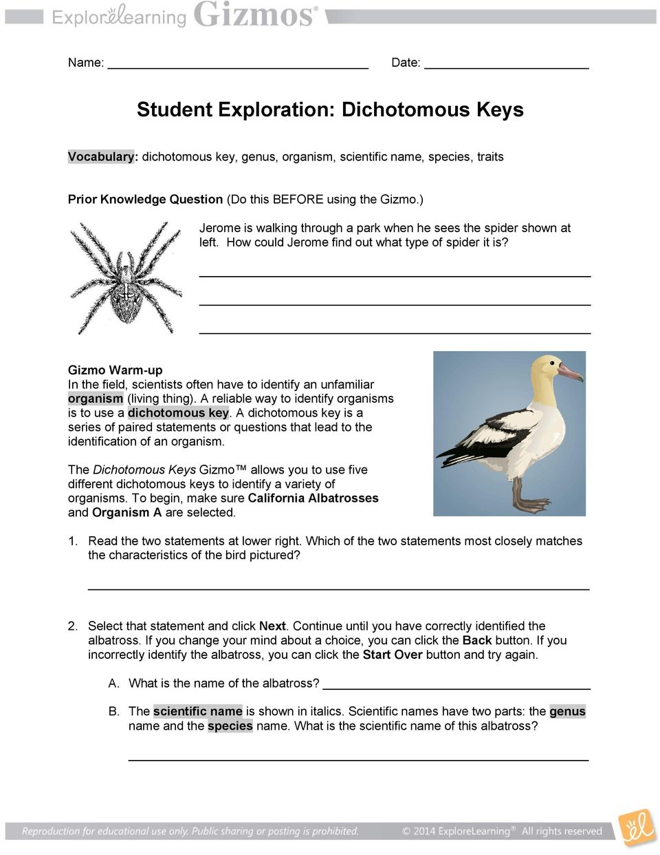 Student Exploration: Dichotomous Keys - PDF