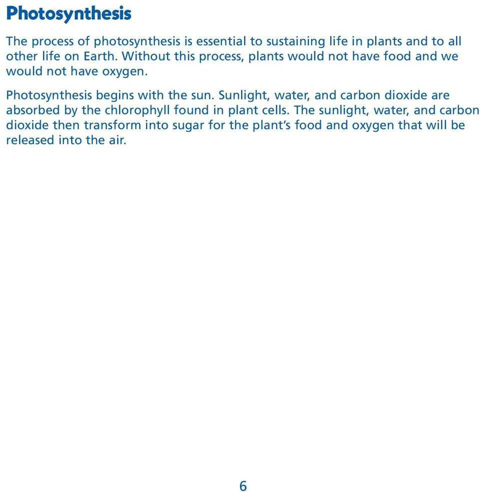 Photosynthesis begins with the sun.