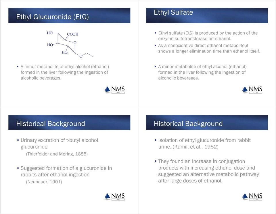 Ethyl Glucuronide  Where is the Drug? Detection Windows