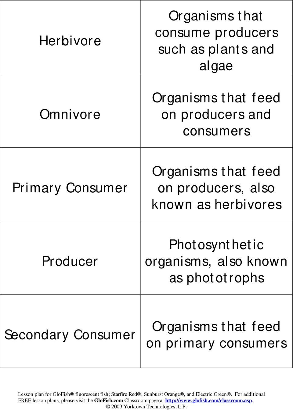 feed on producers, also known as herbivores Producer Photosynthetic organisms,