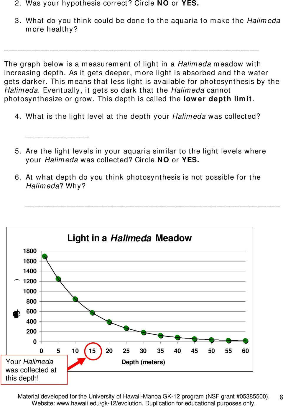 This means that less light is available for photosynthesis by the Halimeda. Eventually, it gets so dark that the Halimeda cannot photosynthesize or grow. This depth is called the lower depth limit. 4.
