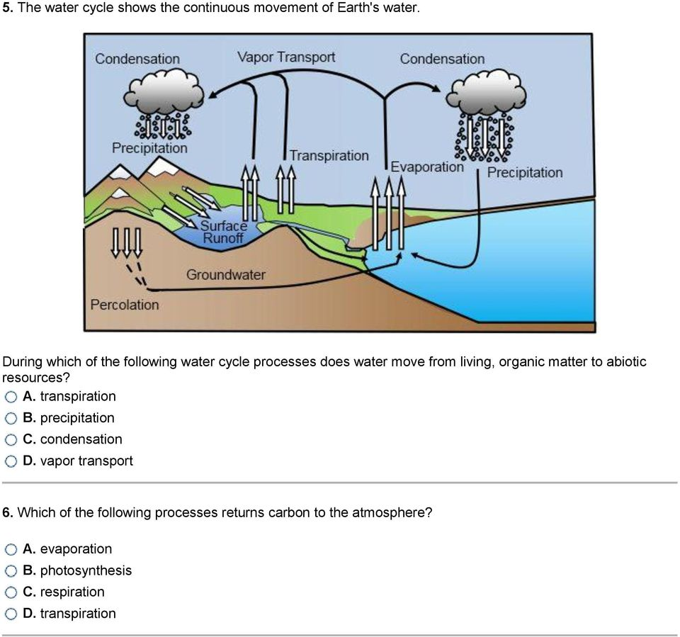 to abiotic resources? A. transpiration B. precipitation C. condensation D. vapor transport 6.
