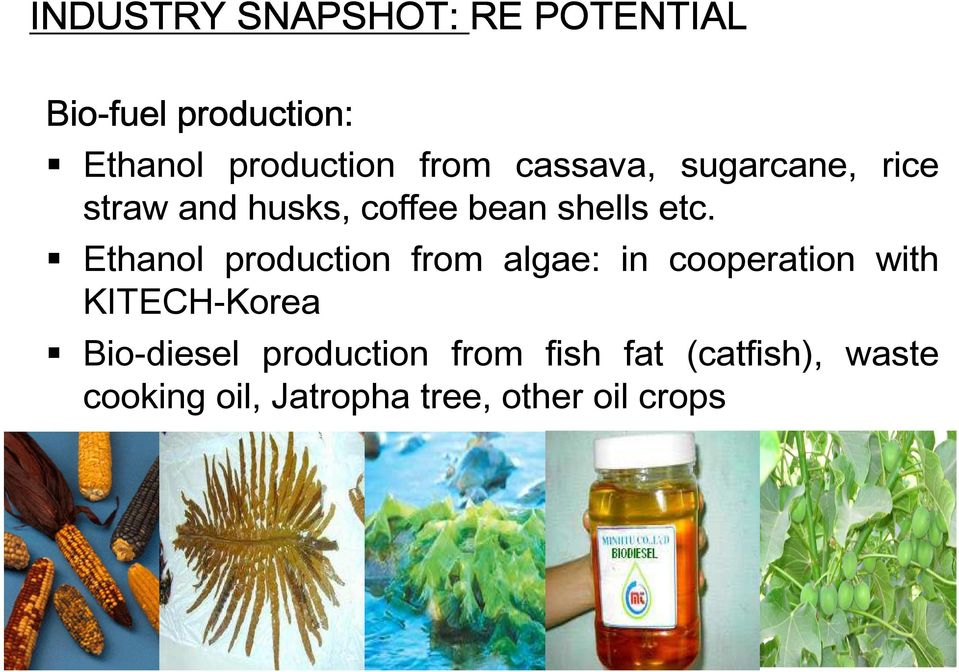 Ethanol production from algae: in cooperation with KITECH-Korea Bio-diesel