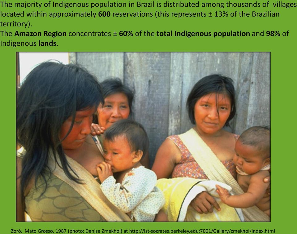 The Amazon Region concentrates ± 60% of the total Indigenous population and 98% of Indigenous lands.