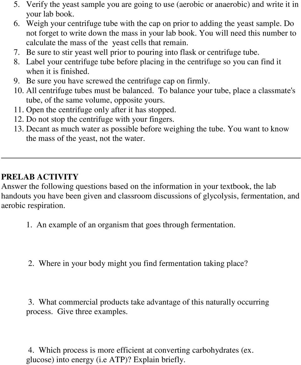 PRE-LAB FOR YEAST RESPIRATION AND FERMENTATION - PDF