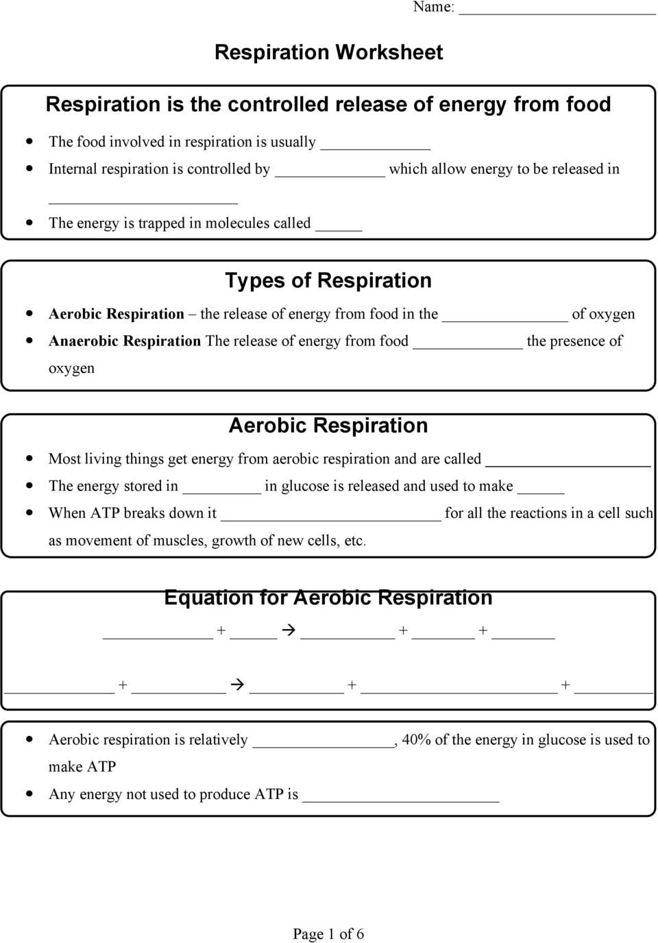 Respiration Worksheet Respiration Is The Controlled Release Of Energy From Food Types Of Respiration Aerobic Respiration Pdf Free Download
