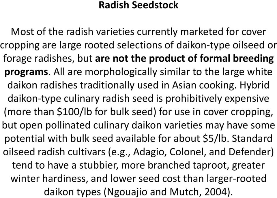 Hybrid daikon-type culinary radish seed is prohibitively expensive (more than $100/lb for bulk seed) for use in cover cropping, but open pollinated culinary daikon varieties may have some