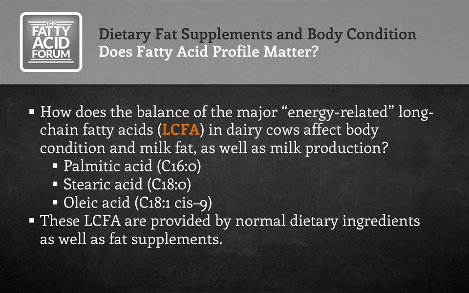 dairy cows affect body condition and milk fat, as well as milk production?