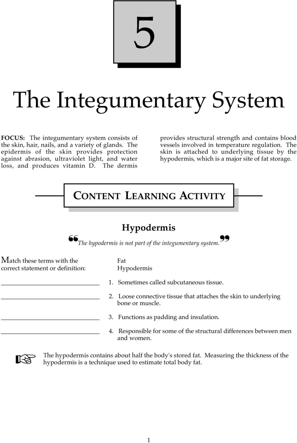 The Integumentary System Pdf