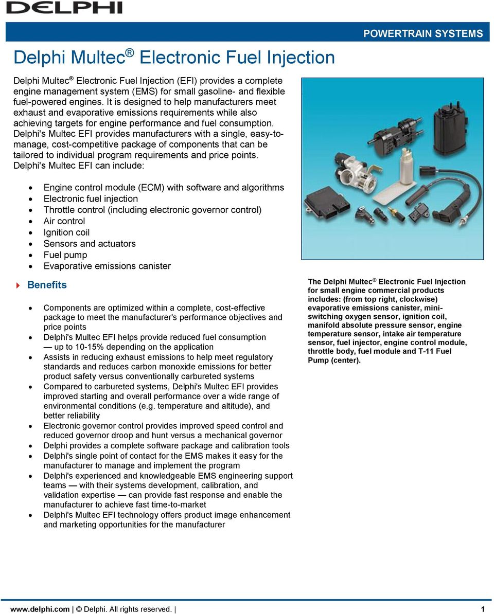 Delphi Multec Electronic Fuel Injection - PDF