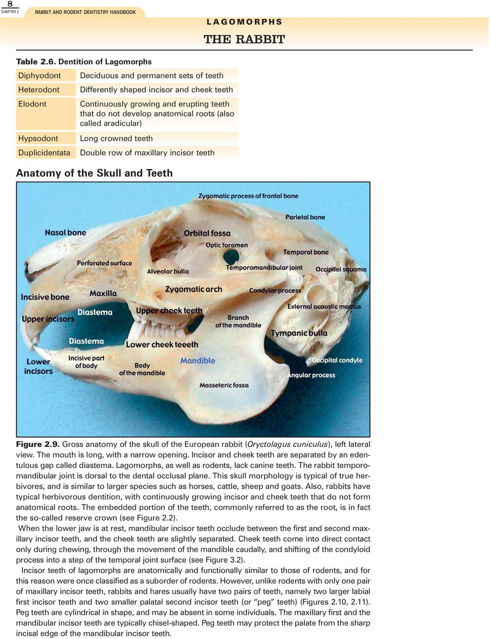 Rabbit and Rodent DENTISTRY - PDF