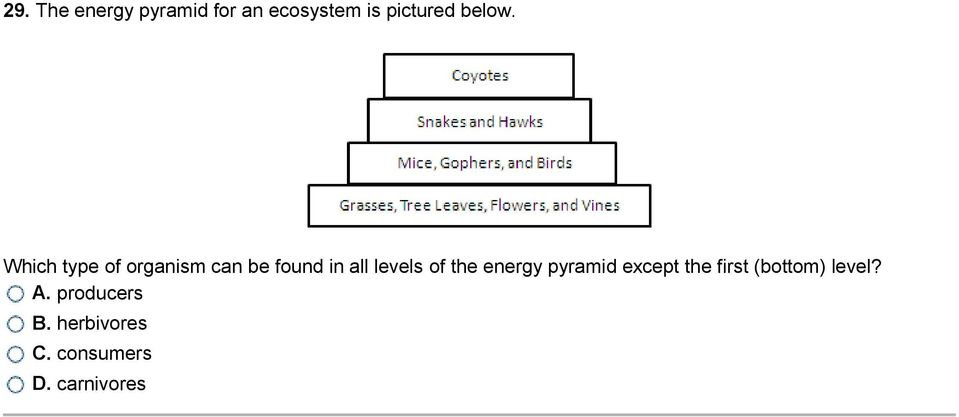 Which type of organism can be found in all levels of