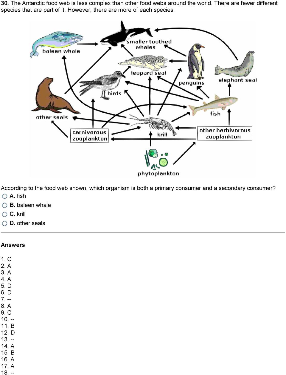 According to the food web shown, which organism is both a primary consumer and a secondary consumer? A.