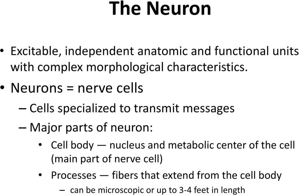 Neurons = nerve cells Cells specialized to transmit messages Major parts of neuron: Cell
