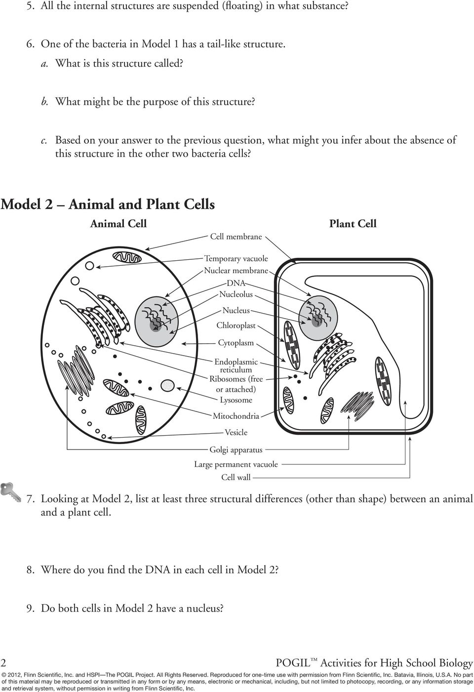 Prokaryotic and Eukaryotic Cells - PDF