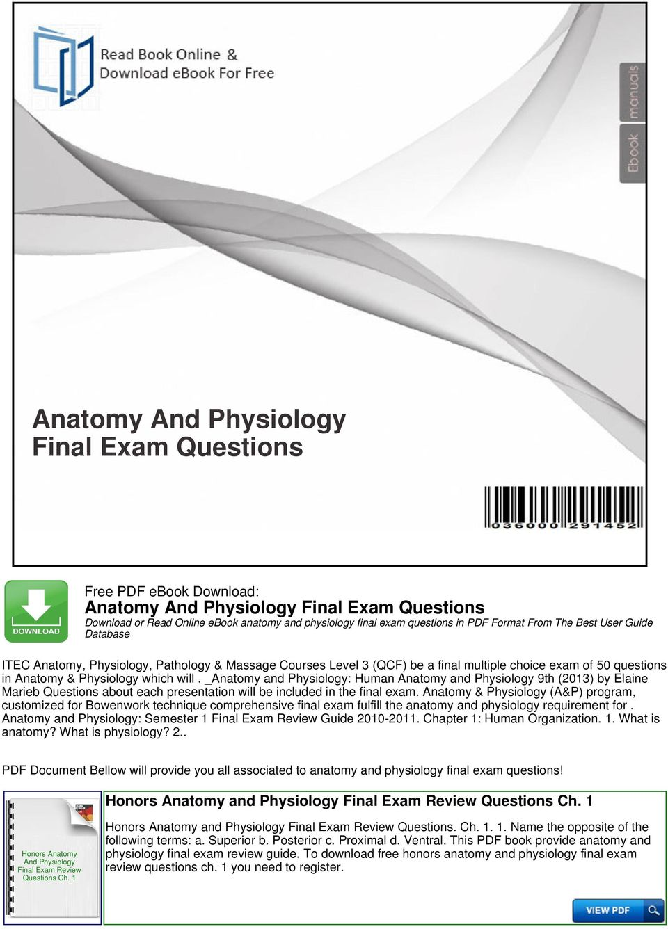 Anatomy And Physiology Final Exam Questions - PDF