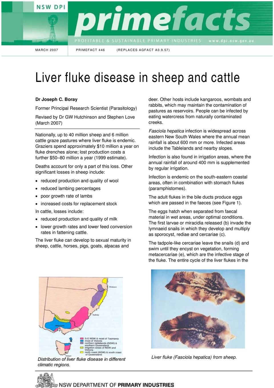 Liver fluke disease in sheep and cattle - PDF
