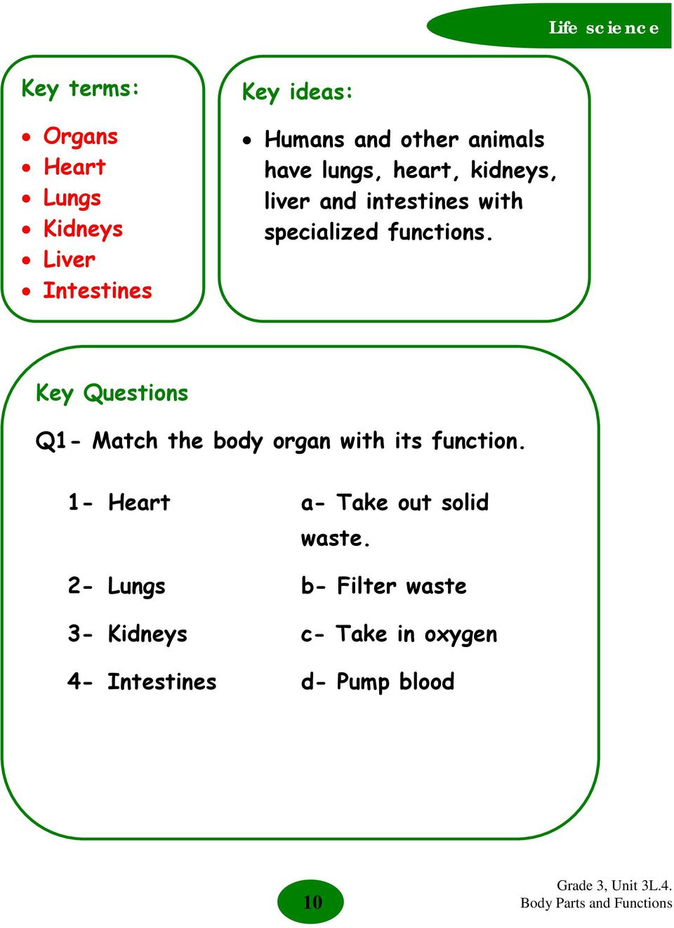 Key Questions Q1- Match the body organ with its function.