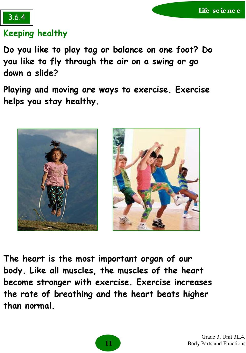 Exercise helps you stay healthy. The heart is the most important organ of our body.