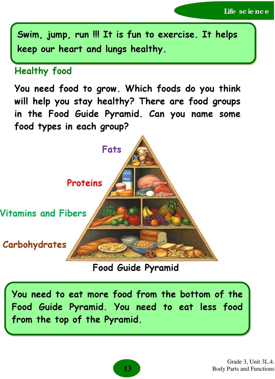 There are food groups in the Food Guide Pyramid. Can you name some food types in each group?