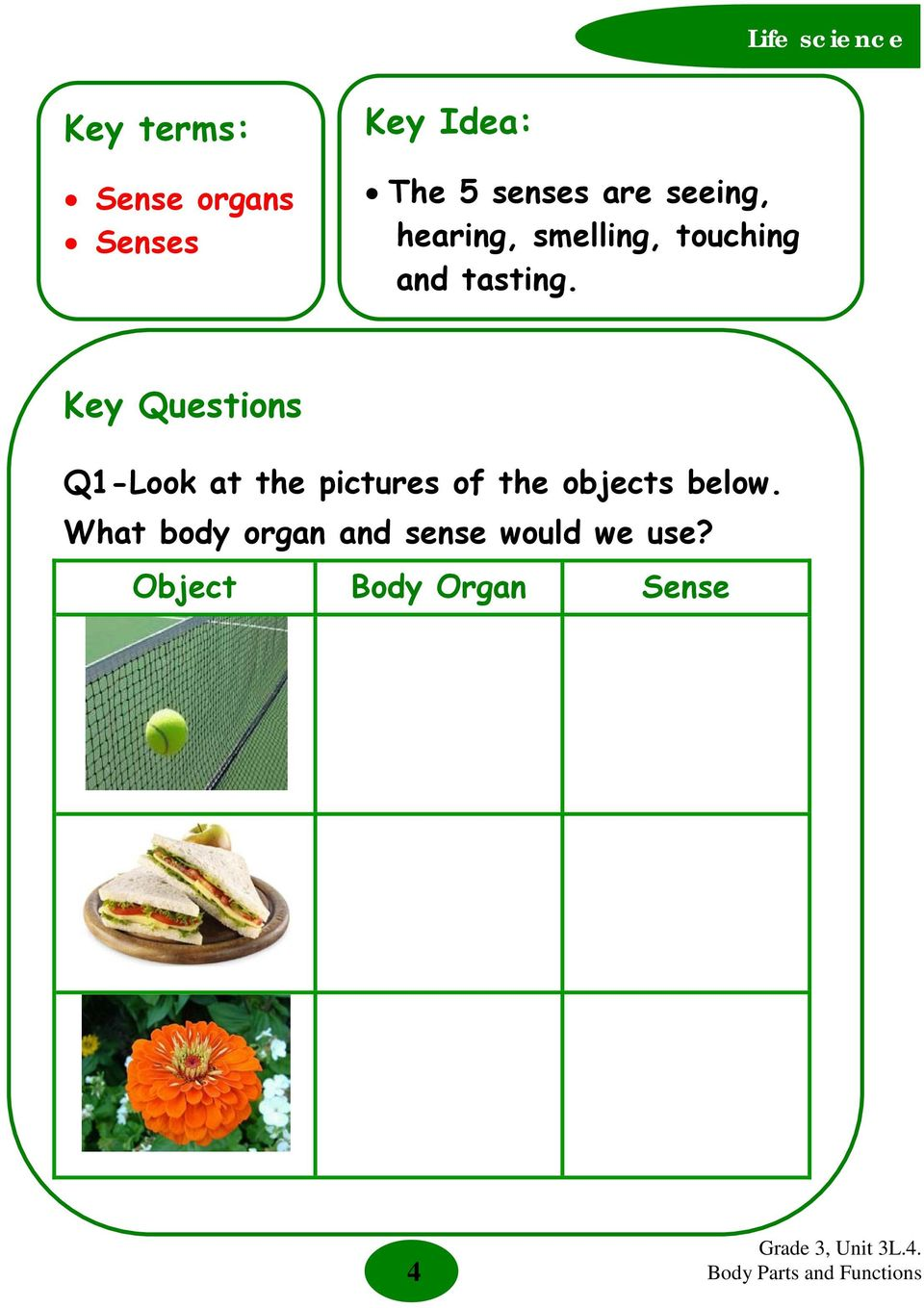 Key Questions Q1-Look at the pictures of the objects