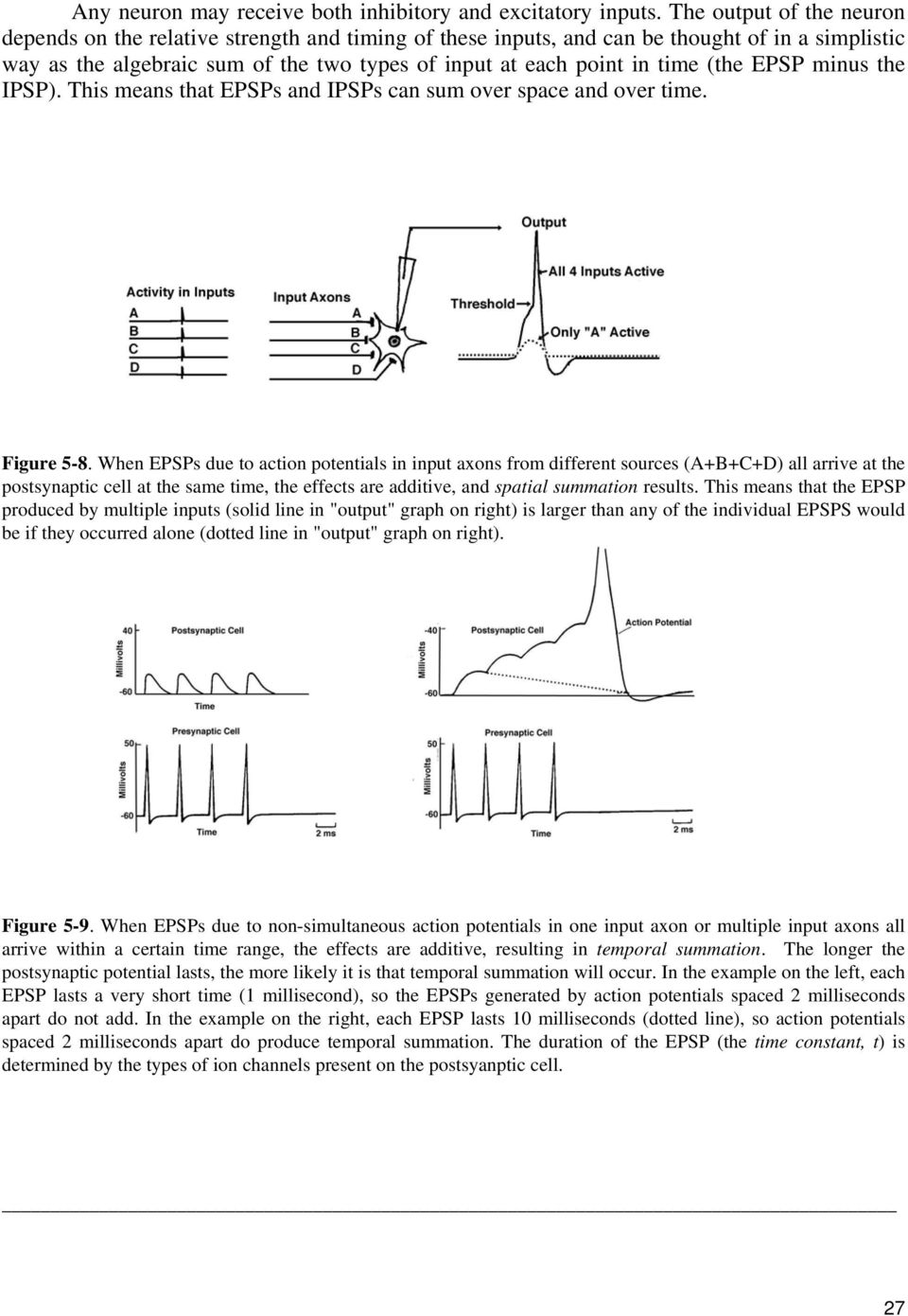 (the EPSP minus the IPSP). This means that EPSPs and IPSPs can sum over space and over time. Figure 5-8.