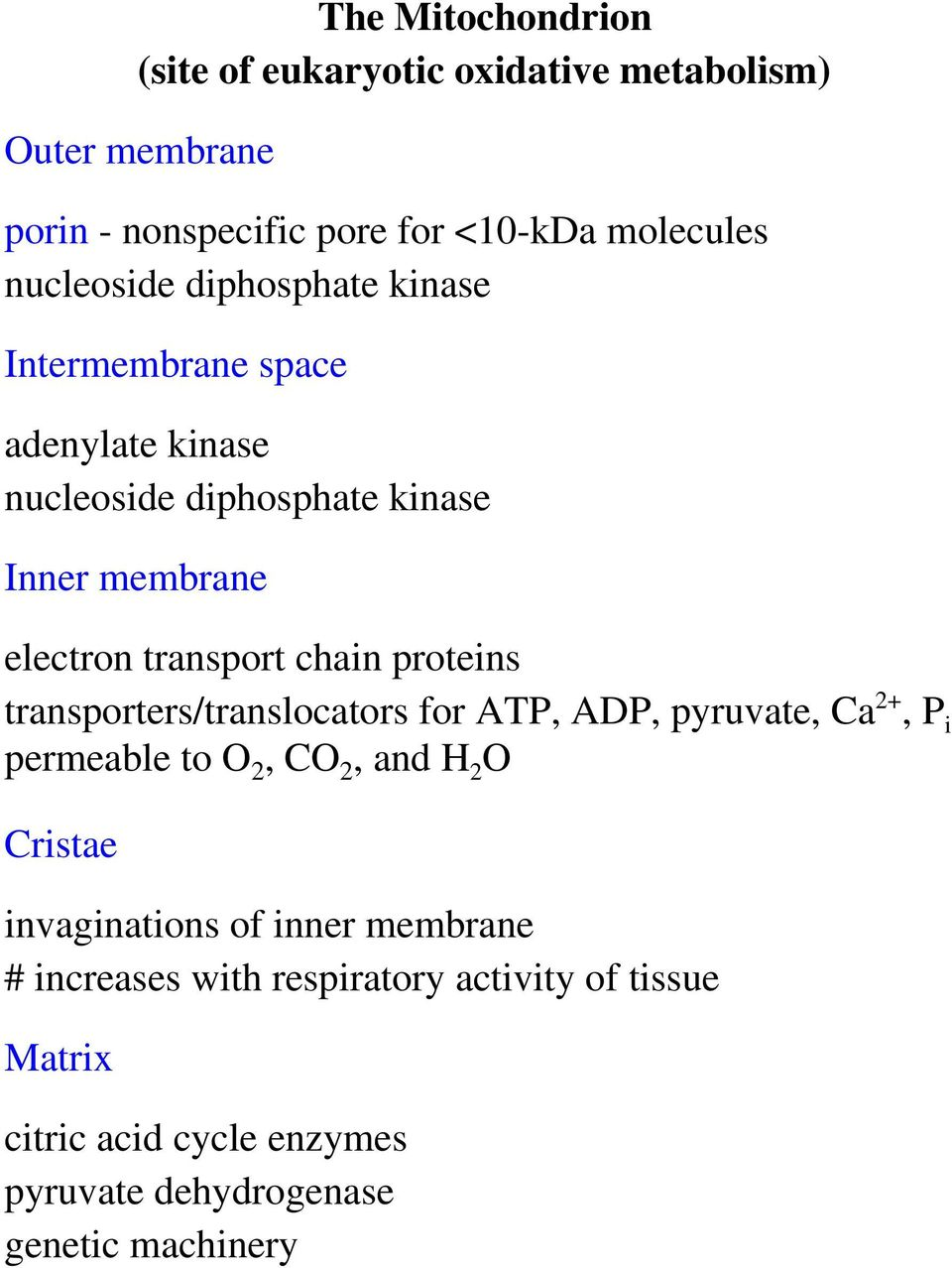 chain proteins transporters/translocators for ATP, ADP, pyruvate, Ca 2+, P i permeable to O 2, CO 2, and H 2 O Cristae