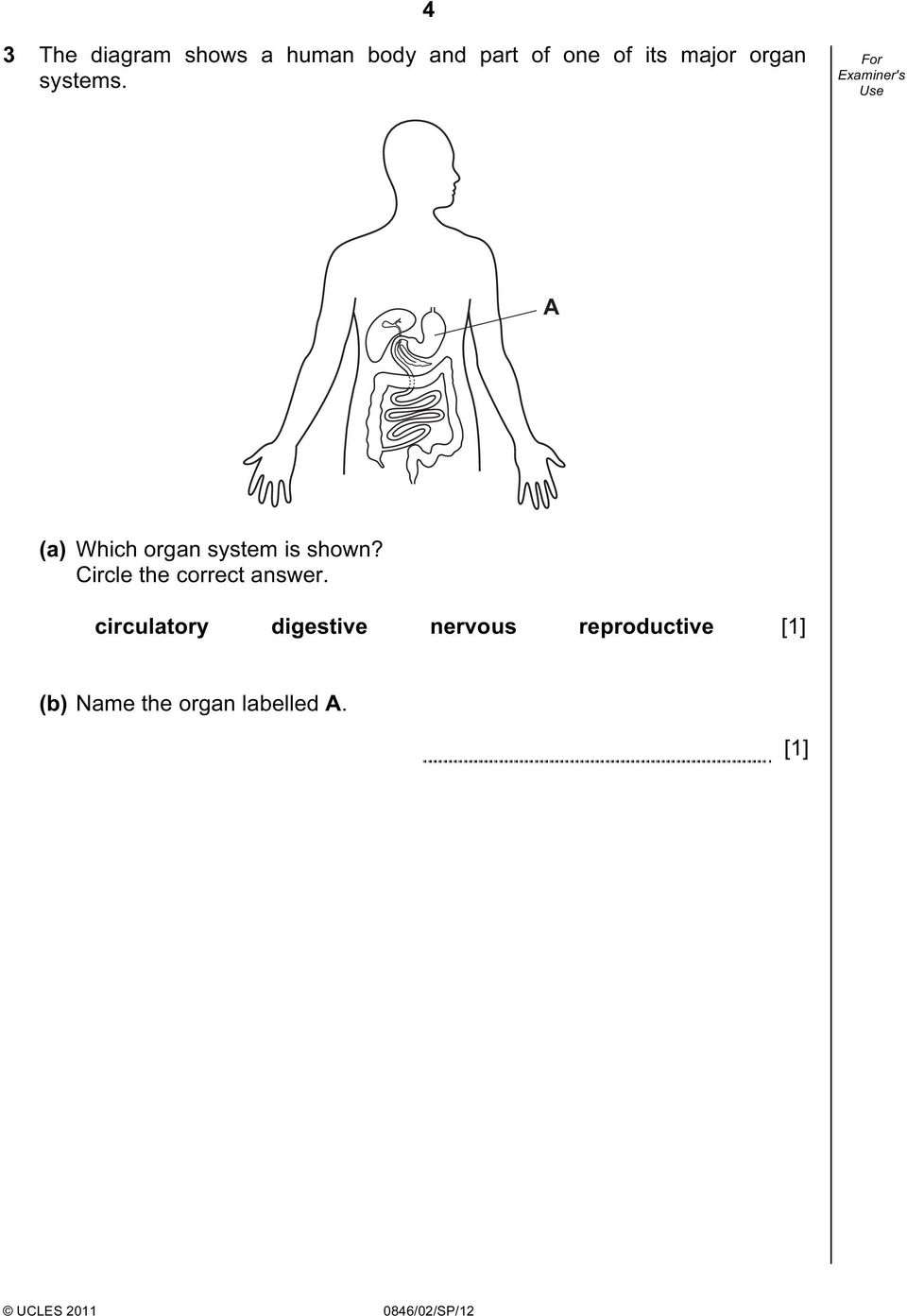 A (a) Which organ system is shown?