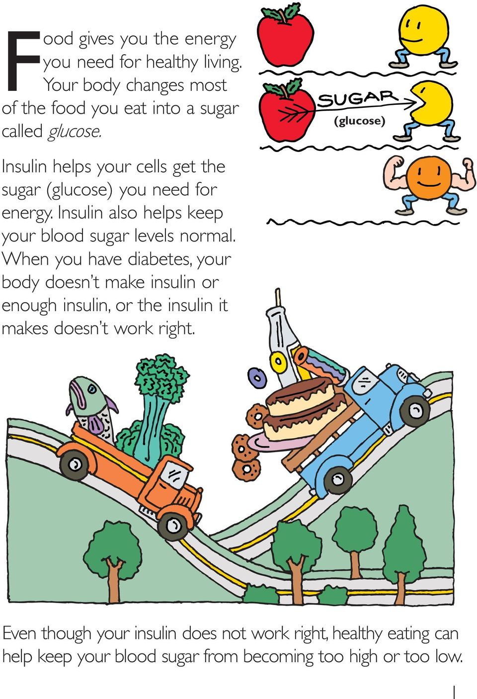 Insulin also helps keep your blood sugar levels normal.