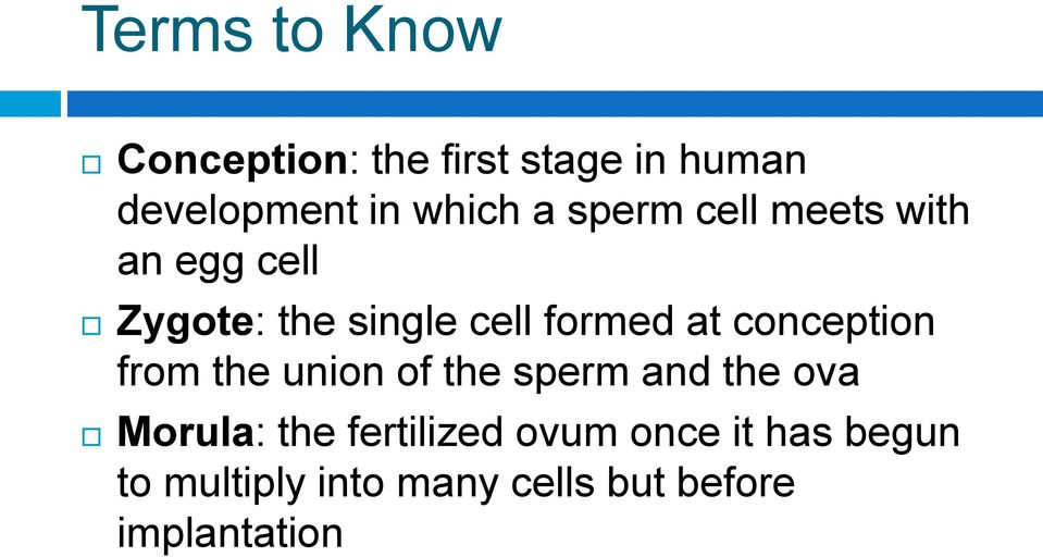 conception from the union of the sperm and the ova Morula: the