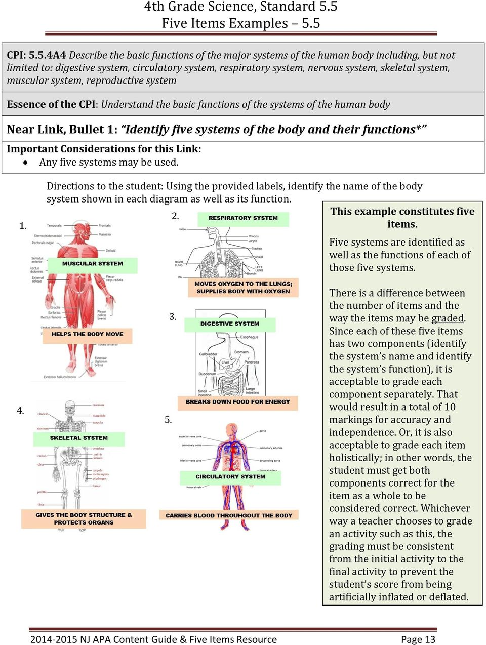 muscular system, reproductive system Essence of the CPI: Understand the basic functions of the systems of the human body Near Link, Bullet 1: Identify five systems of the body and their functions*