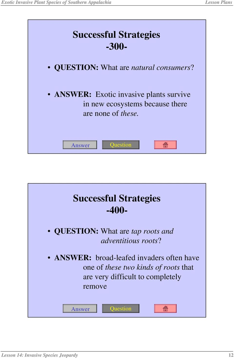 Successful Strategies -400- QUESTION: What are tap roots and adventitious roots?