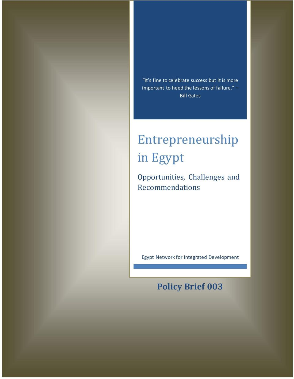 Bill Gates Entrepreneurship in Egypt Opportunities,