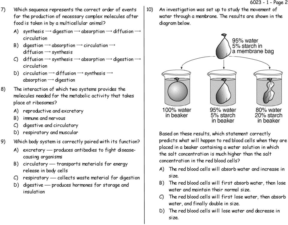synthesis absorption digestion 6023-1 - Page 2 10) An investigation was set up to study the movement of water through a membrane. The results are shown in the diagram below.