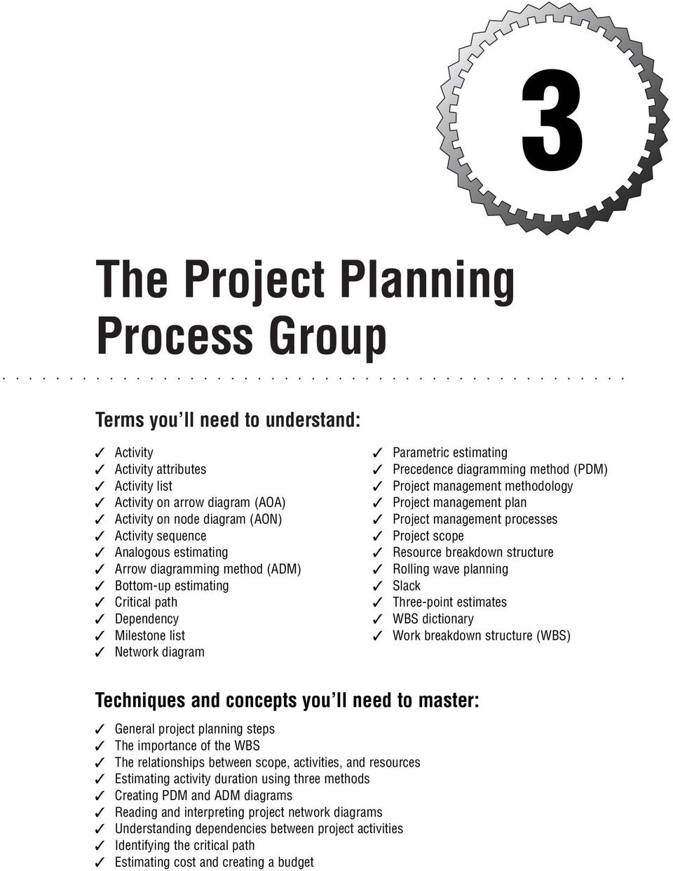 The Project Planning Process Group - PDF
