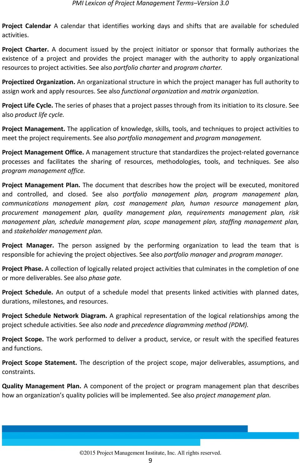 Project Activities See Also Portfolio Charter And Program Projectized Organization