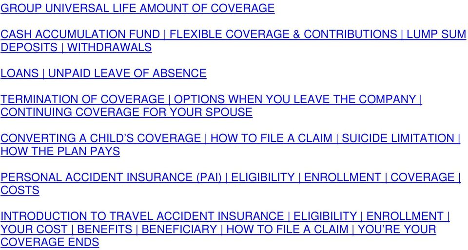 S COVERAGE HOW TO FILE A CLAIM SUICIDE LIMITATION HOW THE PLAN PAYS PERSONAL ACCIDENT INSURANCE (PAI) ELIGIBILITY ENROLLMENT COVERAGE
