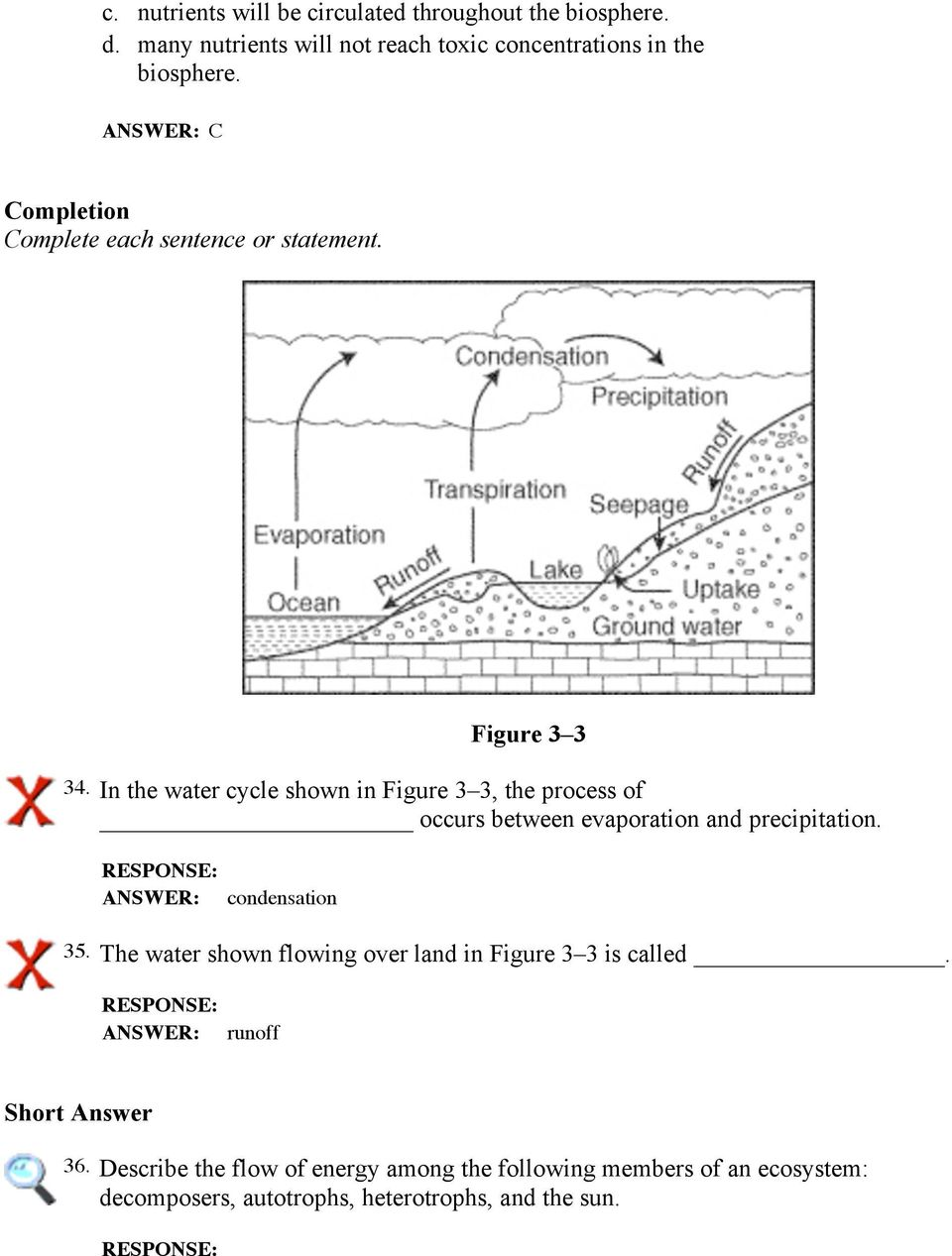 In the water cycle shown in Figure 3 3, the process of occurs between evaporation and precipitation. condensation 35.