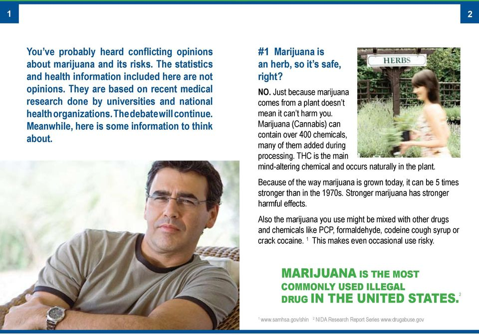 #1 Marijuana is an herb, so it s safe, right? NO. Just because marijuana comes from a plant doesn t mean it can t harm you.