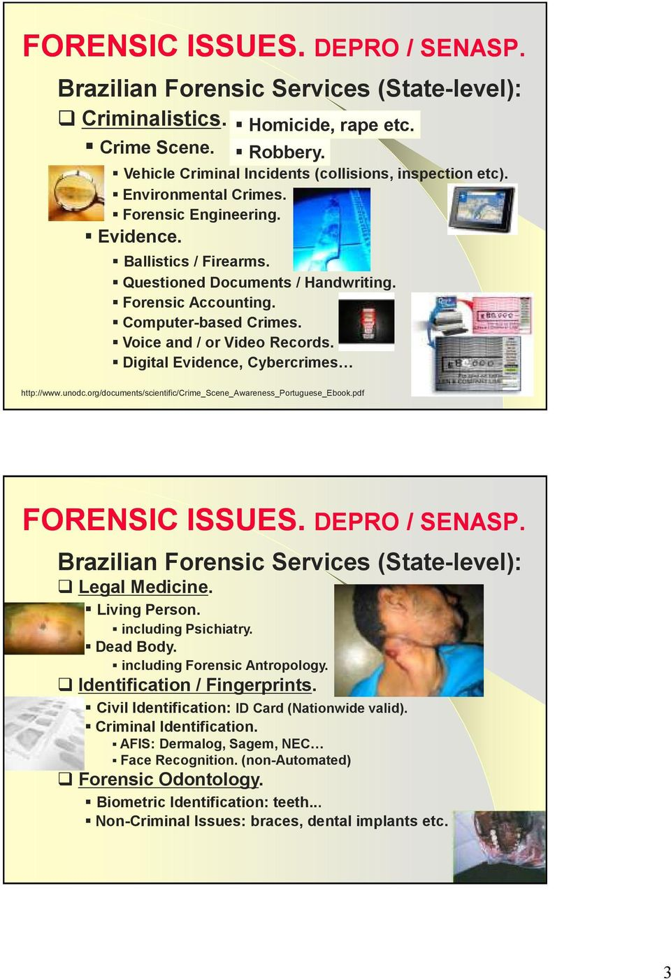 Digital Evidence, Cybercrimes http://www.unodc.org/documents/scientific/crime_scene_awareness_portuguese_ebook.pdf Brazilian Forensic Services (State-level): Legal Medicine. Living Person.