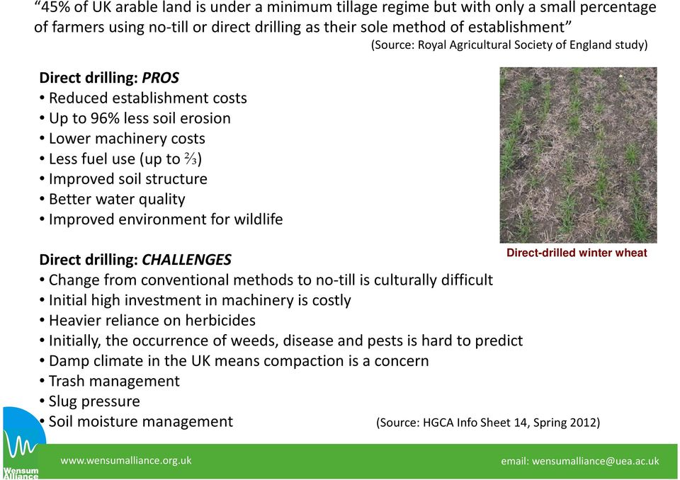 Improved environment for wildlife Direct-drilled winter wheat Direct drilling: CHALLENGES Change from conventional methods to no-till is culturally difficult Initial high investment in machinery is
