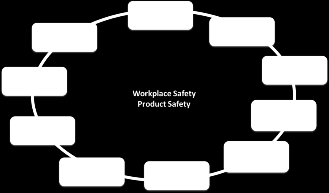 8 F. Lockwood, R. Canham & M. Wright Fig. 3. Ten elements of a safety culture. 2.